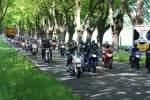 Bild 658 vom Bikergottesdienst Bad Doberan 2009